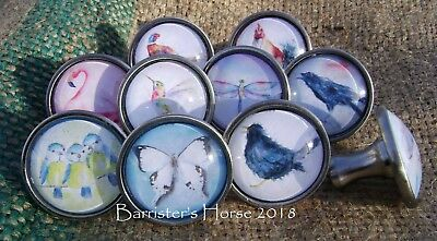 Birds, Butterflies, Dragonfly, Cupboard Drawer Knobs Handles Silver Metal/glass