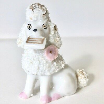 White Poodle Sitting w/Gold Accents Book in Mouth Pink Paws Vintage Dog Figurine