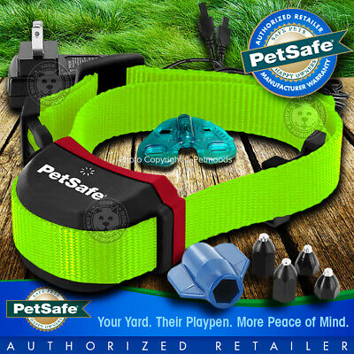 PetSafe Stubborn Stay and Play Rechargeable Wireless Dog Collar Strap Lime Green
