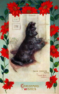 Christmas Poinsettia Border~Maud West Watson~Skye Terrier Dog~NEW Lge Note Cards