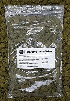 HERONS Premium Algae Wafers [200g] TROPICAL FISH Pleco Catfish Shrimp Snail