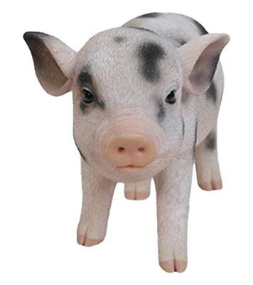 Standing Baby Pig With Black Spots  - Life Like Figurine Statue Home / Garden