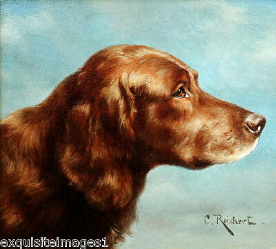 c1890~C. Reichert~Irish Setter Puppy Dog Profile~NEW Large Note Cards