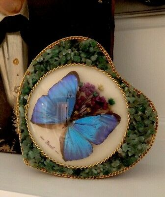 Vintage Real Butterfly Wing Trinket Jewelry Jeweled Box Pretty