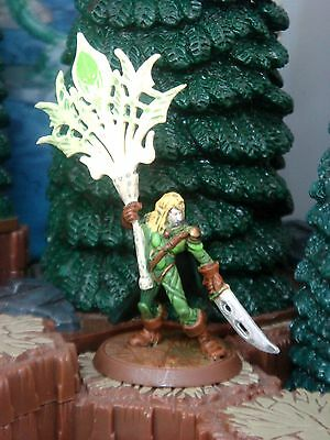 Acolarh  Ullar Flag Bearer Heroscape Crest of the Valkyrie