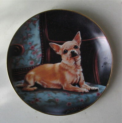 """Chihuahua Limited Edition Collectors Plate """"the Perfect Spot"""""""