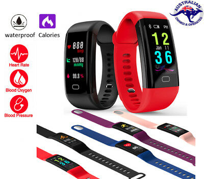 Colour Fitness Activity Tracker Health Heart Rate Monitor for Kids Men Women AU