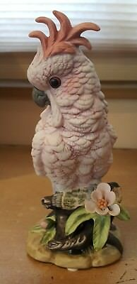 Rare Pink Cockatoo porcelain figurine by Royal Carlton, 1987