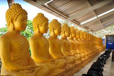 Digital Picture Image Photo Wallpaper JPG gold buddas Asia