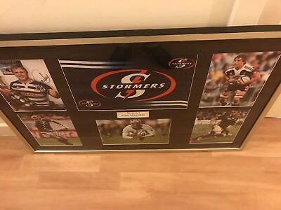 Signed and Framed Stormers Rugby Union Photos South Africa Autograph Super XV