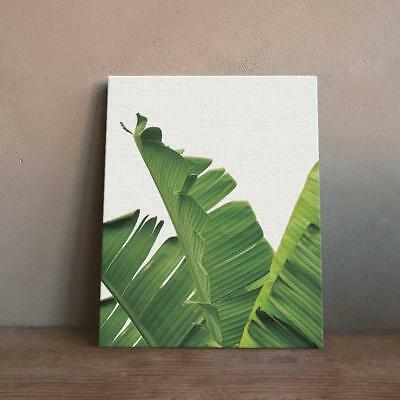 Green Plants Canvas Art Wall Poster Tropical Leaves Contemporary Pictures S
