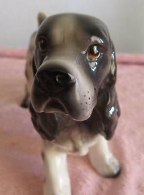 "Porcelain Springer Cocker  Spaniel Dog ""matte""  Figurine "" Enesco Label"" Rare!"