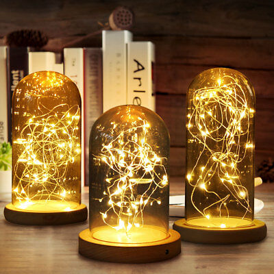 Glass Dome Bell Jar Decorative Cloche Display Wooden Base & Fairy LED Light