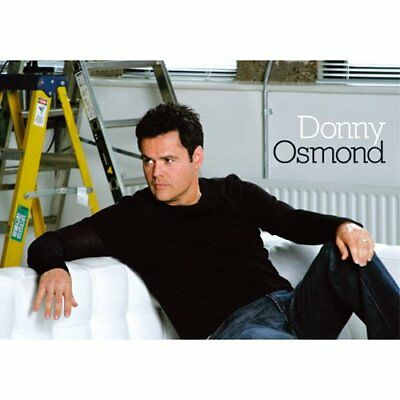 Donny Osmond Postcard: On Couch