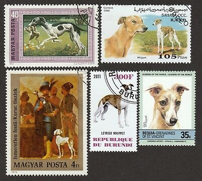 ON SALE!!  WHIPPET ** Int'l Dog Postage Stamp Collection ** Unique Gift*