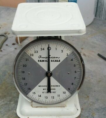 Vintage American Family Kitchen Scale White 25 lb Market Farm Style