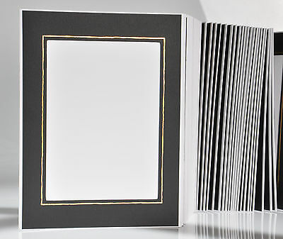 Picture Folder/Leporello for 100 Photos 13x18 - Black with Gold Edge - 315G
