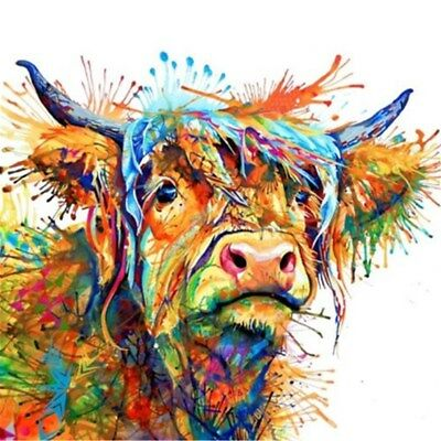 40*40cm Colourful Haired Highland Cow Wall Home Decor Art Printed Canvas Print