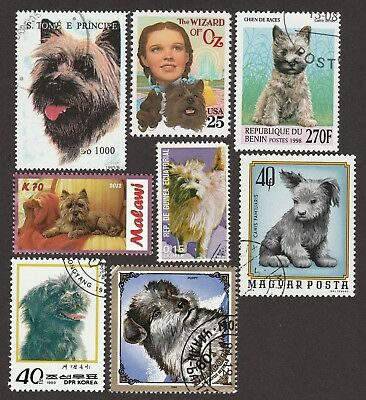 CAIRN TERRIER ** Int'l Dog Postage Stamp Collection **Unique Gift Idea**
