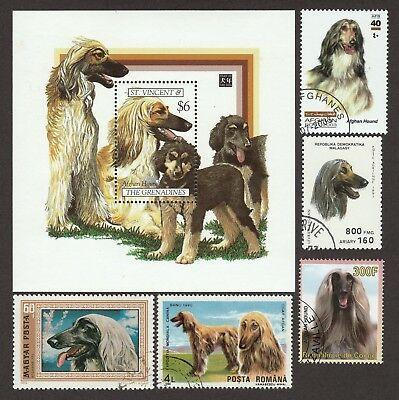 AFGHAN HOUND ** Int'l Dog Postage Stamp Collection ** Unique Gift*