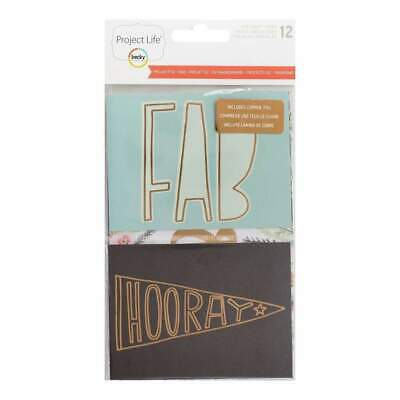 NEW Project Life Specialty Card Pack 12 pack Project 52 Rad with Copper Foil