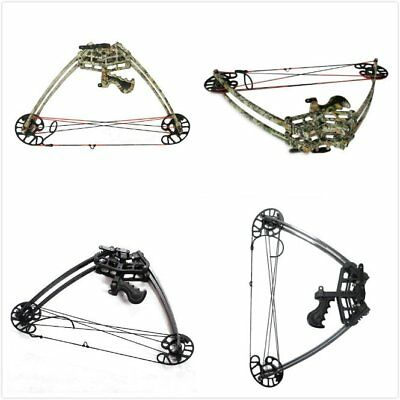 """40-50lbs Triangle Compound Bow 27"""" Right Hand Archery Hunting Shooting"""