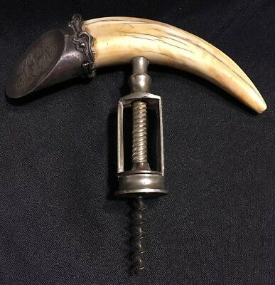 Antique Corkscrew with Boars Tusk and Sterling Handle