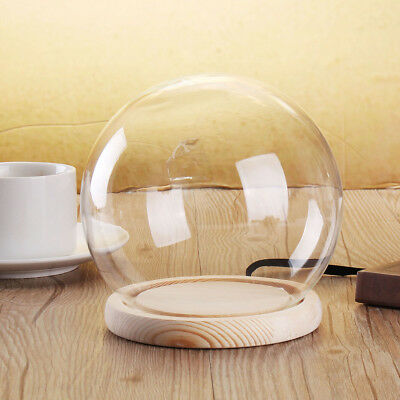 Small/Large Glass Stand Display Dome Cloche Globe Bell Jar Tealight Flower Cover