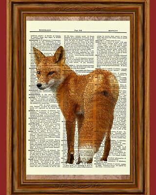 Red Fox Dictionary Art Print Poster Picture Wildlife Animal Wild Collectible