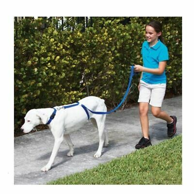 Stop Pulling & Walk Easy - Instant Trainer Leash as seen on TV, No Pull Dog Lead