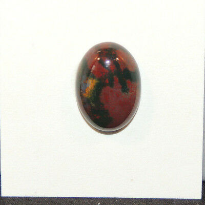 Bloodstone Cabochon 13x18mm with 6mm dome from India  (13499)