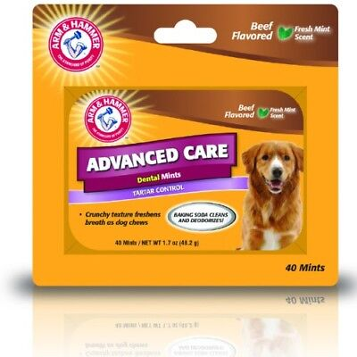 Arm and Hammer Advanced Care Tartar Control Dental Mints Beef Flavoured for Dogs