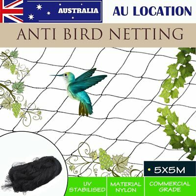 Anti Bird Netting Commercial Pest Net Plant net / Fruit Tree 5 x 5M  Black
