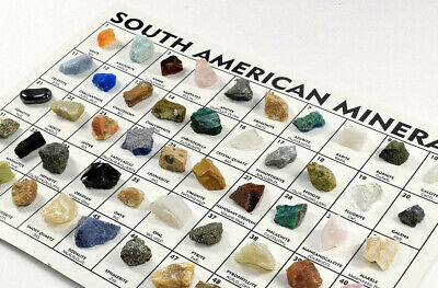 Mineral Collection: Set of 50 South American Crystal Rock Stone Specimens (1PC)