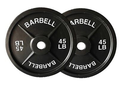 Fake 45 lb Barbell Weight Plates