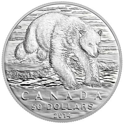Canada 2014 $50 for $50 Iconic Polar Bear - Pure Silver Coin