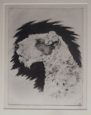 Wire Fox TERRIER DOG Etching Hunting SPORTING ART Benson B Moore SOUTHERN Artist