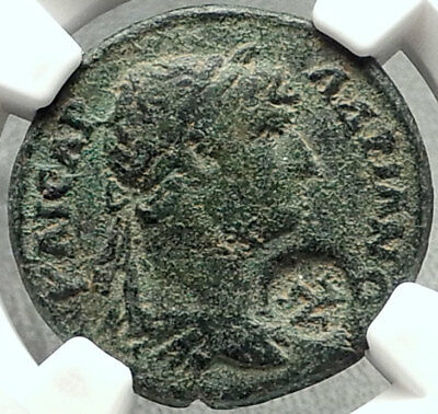HADRIAN Authentic Ancient Selge Pisidia Roman Coin w STYRAX Plants NGC i68450
