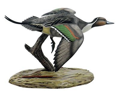 Loon Lake Decoy Pintail Table Top Mount Hunting Waterfowl Sculpture FREE SHIP