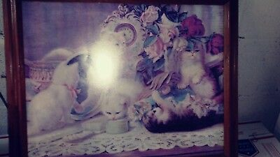 Vintage Picture With Wood Frame....kittens In A Parlor....