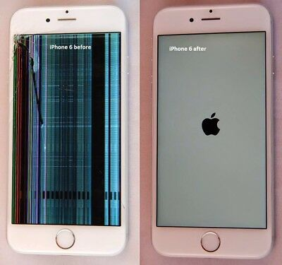 iPhone 6s Plus Screen Repair damaged LCD and Digitizer Service Apple OEM