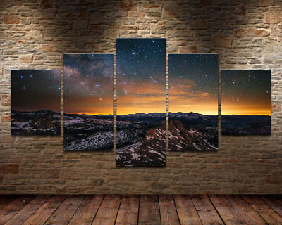 HD Print Oil Painting Home Decor Art on Canvas Forest Stars Sunset 5PCS Unframed