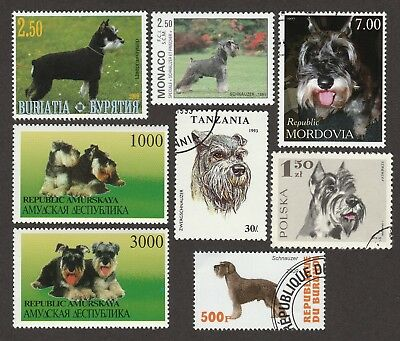 MINIATURE SCHNAUZER ** Int'l Dog Postage Stamp Collection ** Unique Gift **