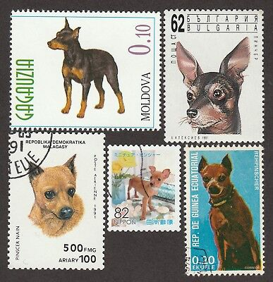 MINIATURE PINSCHER**Int'l Dog Postage Stamp Collection**Great Minpin Gift Idea**