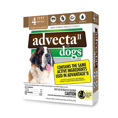 Dogs Flea Treatment Advantage Medication For Dogs Over 55 lbs 4 Month Supply
