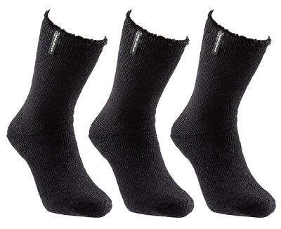 Explorer Men's Original Socks 3-Pack - Black