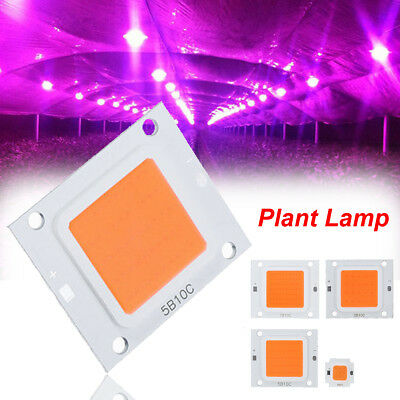 50W 70W 100W LED Cob Indoor Garden Plant Grow Lamp Light Chip DIY Full Spectrum