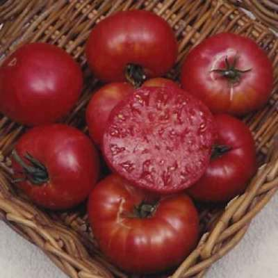 Vegetable Tomato Beefsteak Mortgage Lifter 120 Finest Seeds #4153