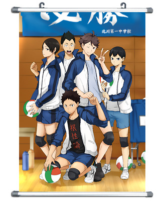 B2015 Haikyuu!! Haikyuu anime manga Wall scroll Stoffposter 25x35cm