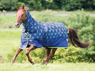 Bridleway Ontario 100G Combo Turnout Rug Carrot Print - RRP £76.95, NOW £59.95